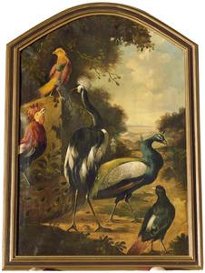 Kraanvogel, een pauw en andere vogels in een park