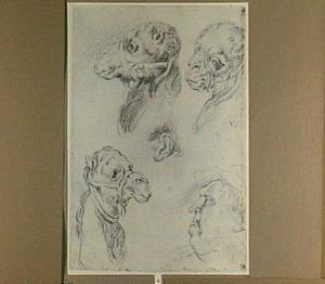 Studies van de kop van een dromedaris, een oor en het hoofd van een man