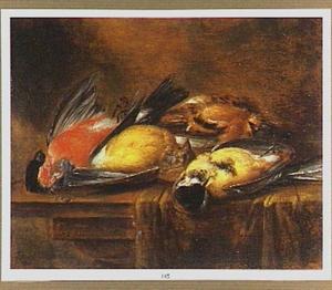 Stilleven van dode vogeltjes op een deels met een kleed bedekte tafel