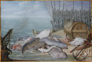 Visstilleven op een strand