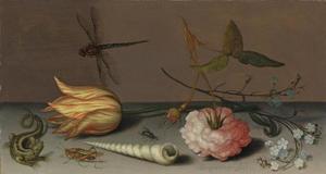 Stilleven met een roos, tulp, vergeet-mij-nietjes, een schelp, een salamander en diverse insecten