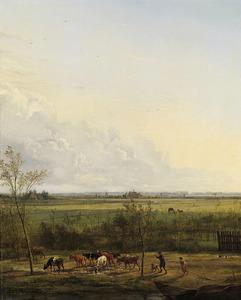 Vergezicht over de weiden bij 's-Graveland