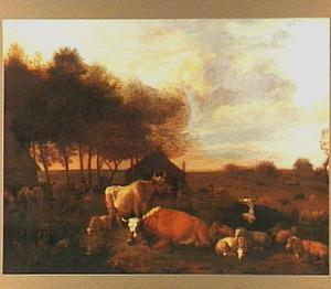 Koeien en schapen in een weids landschap