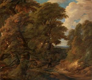 Houtsprokkelaar op een bospad
