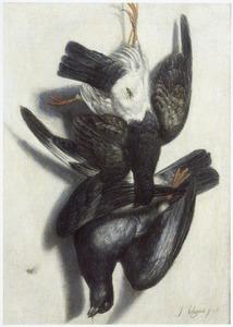 Trompe l'oeil van twee duiven, hangend voor een witte wand