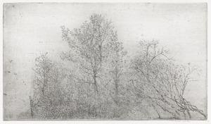 Wintertalingen II