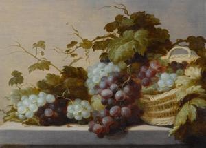 Vruchtenstilleven met druiven