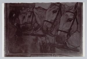 Paarden op de Dam