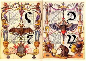 minuskel ç, z en twee andere letters
