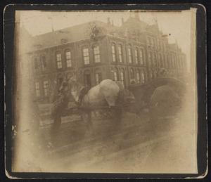 Werkpaard aan het Eikenplein te Amsterdam