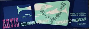 Artis-Aquarium-Tram-Affiche: zeepaardjes - inktvissen