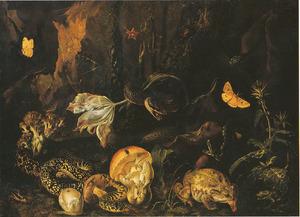 Bosstilleven met insecten en amfibieën