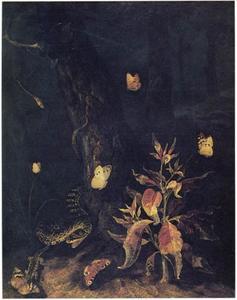 Klaroen aan de voet van een boom, met vlinders en een slang