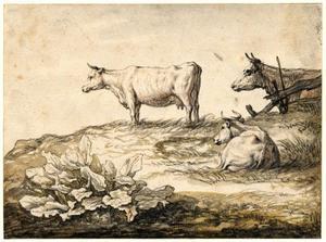 Drie koeien op gras met hoefblad