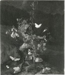 Bossstilleven met vlinders