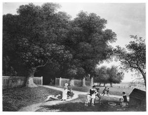 Kinderen spelend bij een hertenpark