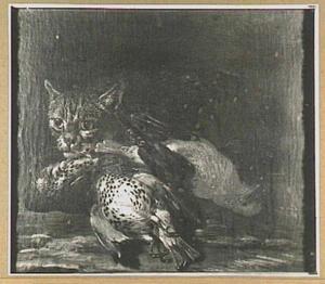Kat bij buit van drie vogels