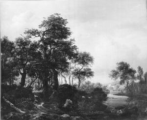 Boomrijk landschap met rivier