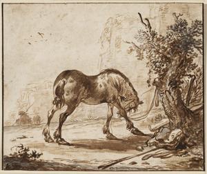 Een paard vastgebonden aan een boom voor een ruïne