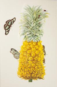 Ananas met tweevlekkige cactuskever en metamorfose van de bamboepage