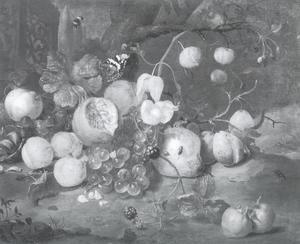 Stilleven met fruit