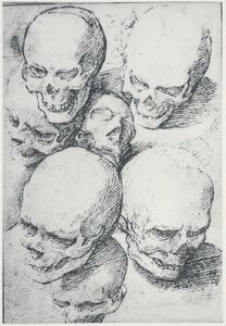 Zeven studies van een schedel