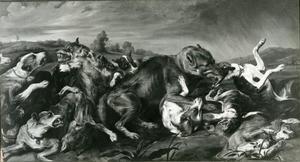 Gevecht tussen drie wolven en een meute jachthonden