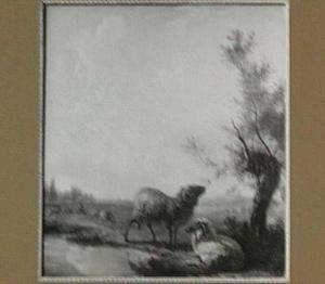 Polderlandschap met een ooi en een ram