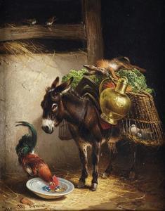 Bepakte ezel met haan in een stal