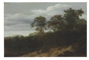 Bebost landschap met een herder op een bospad