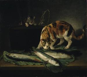 Visstilleven met twee katten