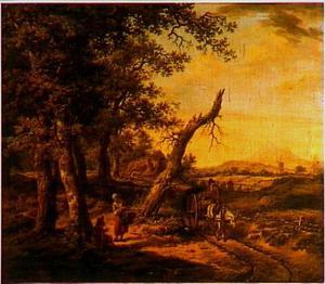 Drents landschap met een paard en wagen