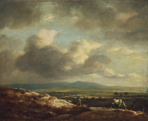 Panoramisch vergezicht over een heuvelachtig landschap, op de voorgrond een wit paard