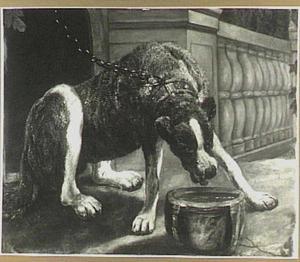 Hond aan ketting probeert uit een bak te eten