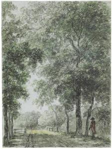 Bospad op het landgoed Treslong bij Hillegom
