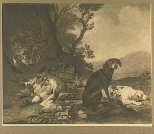 Vier honden bij een jachtbuit van haas en gevogelte in een landschap