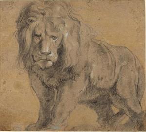 Studie van een staande leeuw