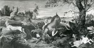 Honden vallen twee damherten aan