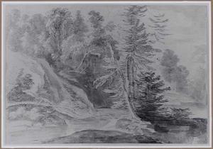 Heuvelachtig boslandschap met beek