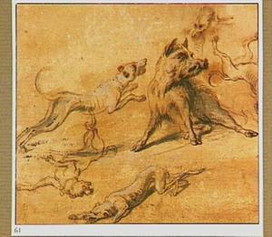 Studie van een wild zwijn en honden