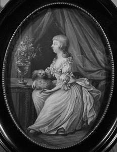 Portret van Nicasie Doys van Burmania (1780-1793)