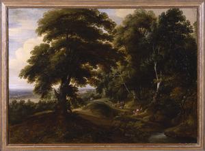 Boslandschap met wandelaars op een bospad