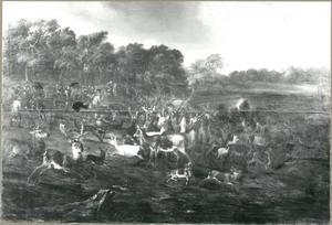 Bijeengedreven herten