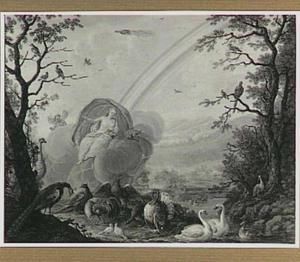 Juno zwevend op een wolk boven een landschap met gevogelte