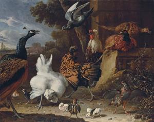 Hoenderhof met een haan, kippen, een duif, een patrijs, fazanten en een pauw met doorkijk naar een park
