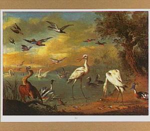 Kustlandschap met watervogels, zwaluwen en andere vogels