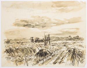 Landschap in Het Gooi