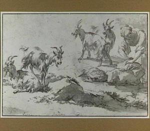 Een wasvrouw en vier geiten