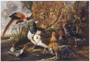 Landschap met een pauw, hanen, kalkoenen, eenden en een papegaai