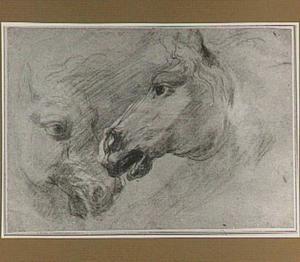 Twee paardenhoofden